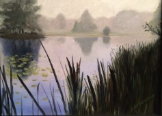 Pond on Bear Mountain, mist, rushes, reflections