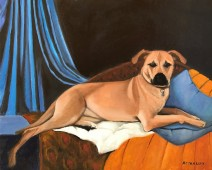dog reclining on furniture with drapery