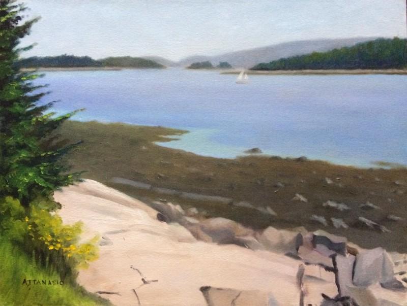 ocean intlet, rocky shore, low tide